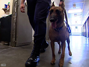 Three dogs have already found about 24 cell phones since the program began in June.