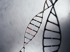 Genetic test predicts brain aging disorders such as Lou Gehrig's disease and Parkinson's.