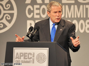 President Bush briefed world leaders on his G-20 economic summit Saturday at the APEC meeting in Peru.