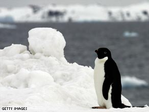 The WWF say climate change threat has worsened in the 15 months since the IPCC last reported.