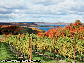 Chateau Grand Traverse vineyard on Lake Michigan