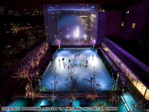 The rink at the American Museum of Natural History is made of a plastic surface engineered to match the density of frozen water.