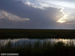 Development, flood control and agricultural runoff have shrunk the Everglades to half its former size.