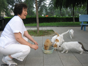 Animal rights advocate Qin Xiaona mixes leftovers to feed stray cats.