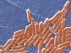 Salmonella bacteria are transmitted to humans by eating contaminated foods.