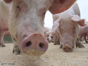 Swine flu is usually diagnosed only in pigs or people in regular contact with them.