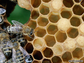 Research has shown that honey has antibacterial properties.