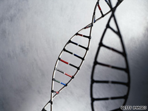 Many genes and mutations are likely involved in producing autism, researchers said.