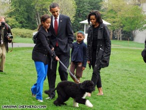 Bo the Portuguese water dog meets the camera. Bo was a gift to the Obama girls from Sen. Ted Kennedy.