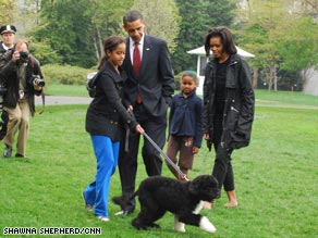 The Obamas enjoy their new family dog, Bo, at the White House.