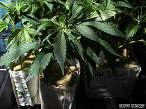 If marijuana were legalized, it could become California's No. 1 cash crop.
