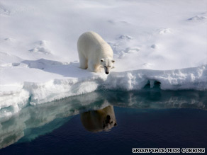 A polar bear checks its reflection in the Robeson channel, near the border between Greenland and Canada.