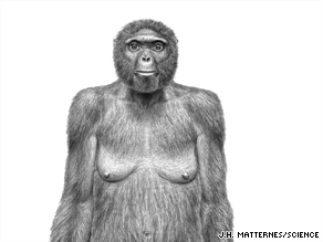 This sketch shows what a 4 million-year-old hominid, nicknamed Ardi, may have looked like.