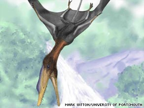 "The pterodactyl has been named Darwinopterus, meaning ""Darwin's wing"" after naturalist Charles Darwin."