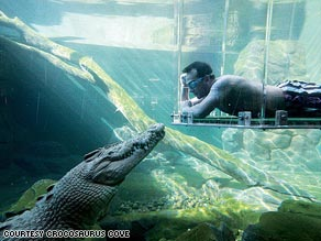 Get up close with a crocodile at Crocosaurus Cove in Darwin, Australia.