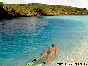 Keep an eye out for jacks, tarpon, turtles and the occasional dolphin or porpoise at Dean's Blue Hole in the Bahamas