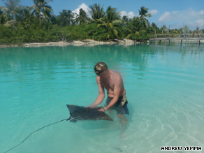 Marine biologist Oliver Martin works with a ray at the Four Seasons' inner snorkeling lagoon on Bora Bora.