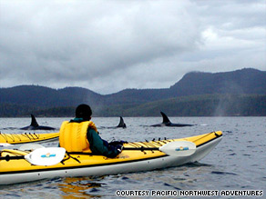 Surrounded by the glaciated peaks of the Coastal Range, kayakers can see pods of orcas in British Columbia's Johnstone Strait.