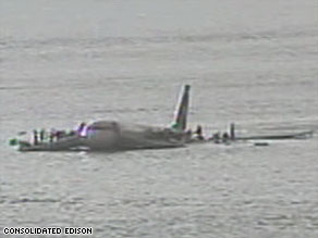 A feather was found inside one of the engines of the plane that crashed into the Hudson River.