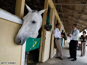 Scrutiny in horse deaths falls on vitamins