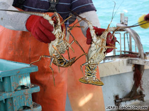 Lessard says people in the Keys first began fishing for lobster in the 1930s.