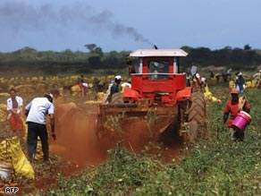 Cuba experienced a reordering of its food production in the early 1990's. A boom for organic foods, but problems persist.