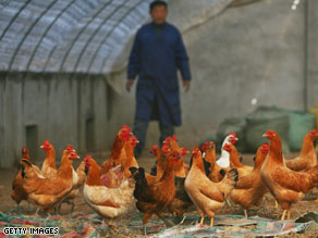 Nantong of Jiangsu province, China, last month, where the H5N1 virus was discovered.