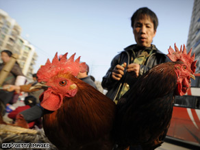 Police close a poultry market on January 9 in north China's Hebei province.