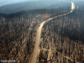 A dirt track runs through the burnt out forest in the Kinglake region of Victoria state.