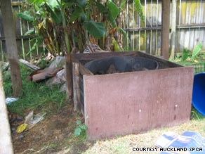 Auckland SPCA officers found the charred body of a Staffordshire terrier cooking in this barbecue pit.