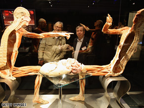 One of the 200 corpses on display at the Von Hagens exhibition in central Berlin.