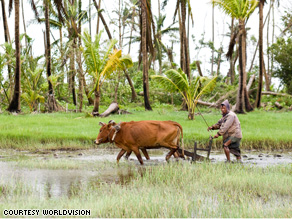 Because of Cyclone Nargis, a farmer in Myanmar is plowing his field weeks after the regular planting season. Natural disasters can exponentially increase the impact of the food and economic crises on the poor.
