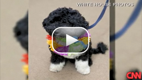 First lady Michelle Obama gives an update on the first dog, calling him 'crazy.' CNN's Alina Cho reports.