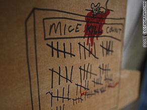 The kill count board for mice