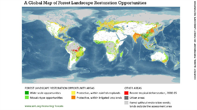 "Potential areas for reforestation. Yellow and orange ""protective"" areas indicate where patches of forest could be used around waterways and fields to protect them."