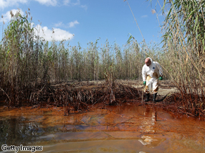 Greenpeace USA executive director Phil Radford inspects oil-covered reeds in Louisiana.