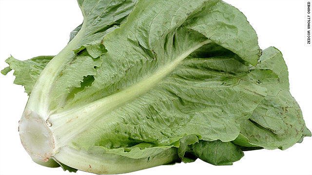 Refrain from this romaine
