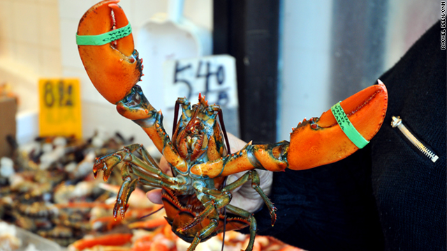 Lobster tales: 5-year ban coming to East Coast?