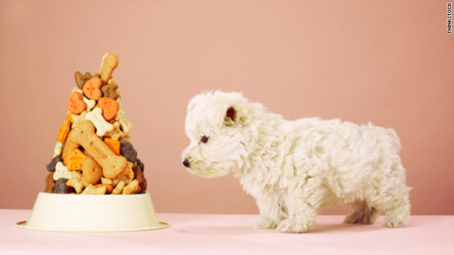 Tainted pet food can sicken owners and kids