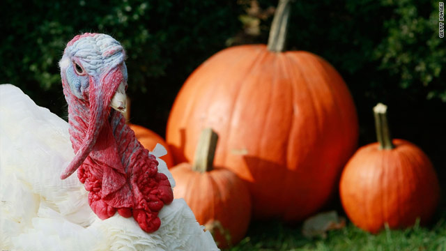 The CNN Challenge: Thanksgiving Quiz