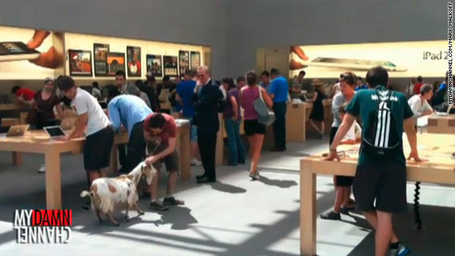 Comedian Mark Malkoff brought a live goat -- among other things -- into a New York City Apple store.