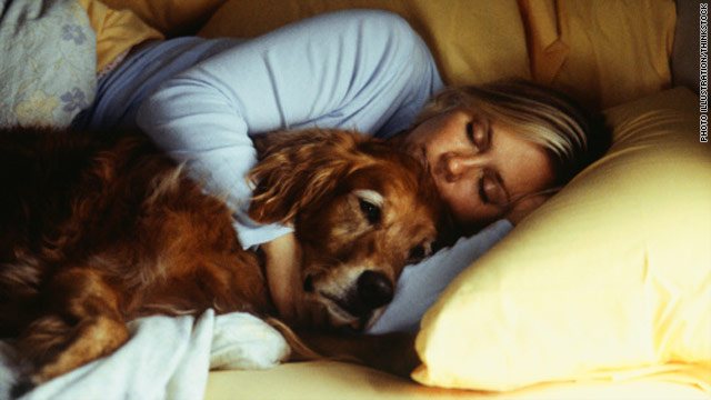 A furry dilemma: Sleep with your pet, risk catching his bugs
