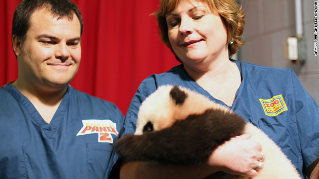 Only panda born in U.S. in 2010 named 'Po'