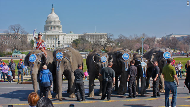 Elephants and donkeys stroll across Capitol Hill