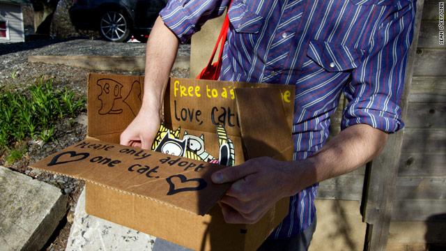 Easter hunt targets the work of street artist known as 'Catlanta'
