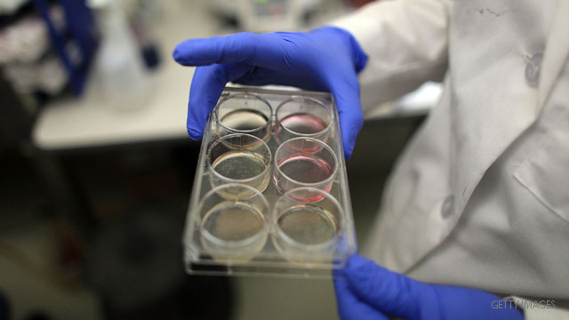 Appeals court lifts ban on federal funding for stem cell research