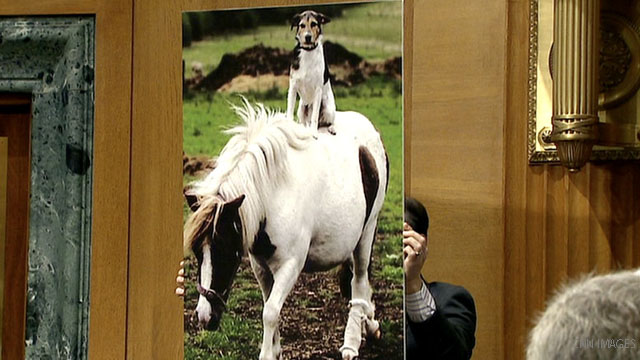 The senator and his dog on horse photo