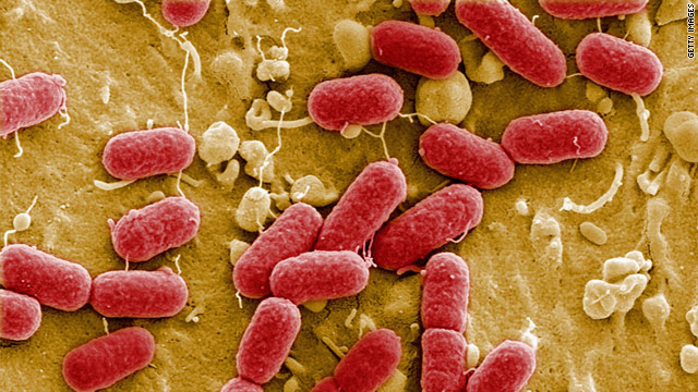 Chinese agency says European E. coli is new strain; Russia sets ban
