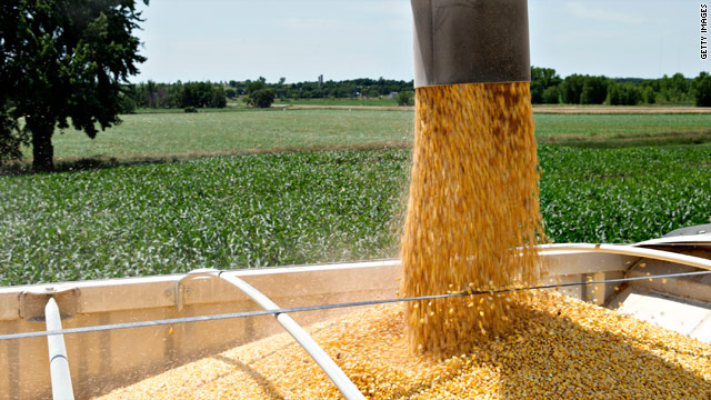 Senate votes to scrap ethanol subsidy