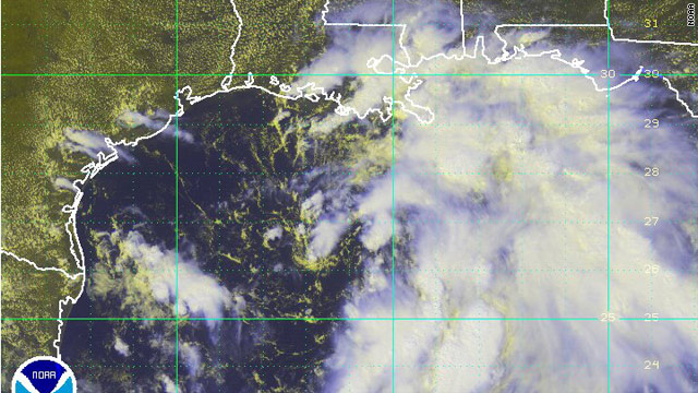 Gulf Coast states prepare for tropical depression